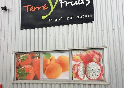 TYF : Décor adhésif sur panneau dibon, éclaire par profilé led. Terre y Fruits Esvres